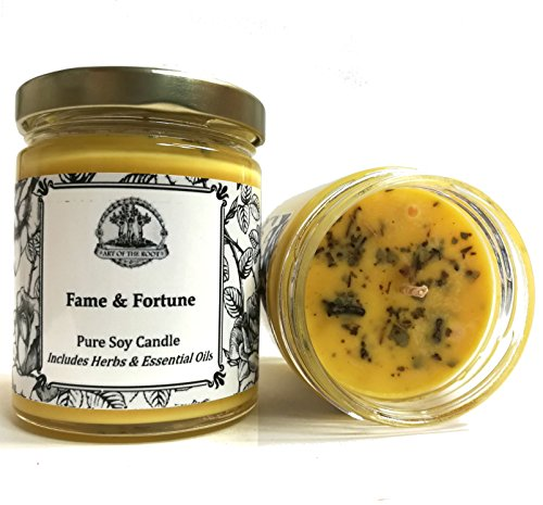 Fame & Fortune 8 oz Soy Spell Candle Beauty, Notoriety, Wealth, Success & Adoration (Hoodoo Voodoo Wiccan Pagan Magick) -