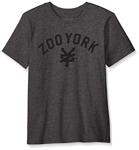 Zoo York Men's Big Boys' Short Sleeve Crew Neck Shirt, Immergruen Charcoal, Medium (10/12)