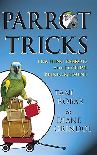 Parrot Tricks Teaching Positive Reinforcement
