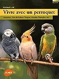 vivre avec un perroquet amazones gris du gabon youyou grandes perruches etc