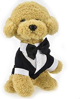 Lindo traje de ropa para mascota, perro, gato, boda o esmoquin ...