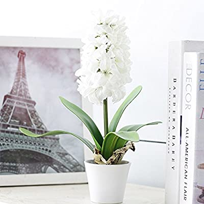 Mkono Artificial Flower Silk Plant Hyacinth Potted In Plastic Pot