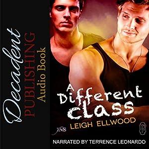 A Different Class Audiobook