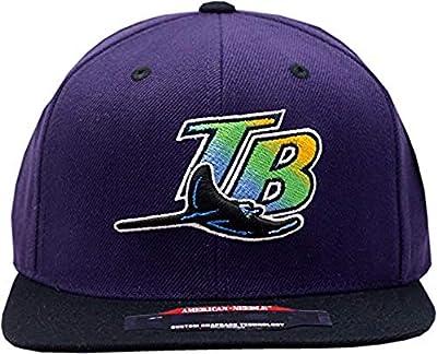 Tampa Bay Devil Rays Snapback Back to Front Purple/Black