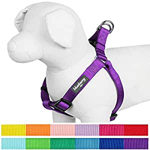 """Blueberry Pet 12 Colors Step-in Classic Dog Harness, Chest Girth 16.5"""" - 21.5"""", Dark Orchid, Small, Adjustable Harnesses for Dogs"""