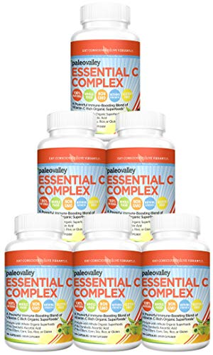 Paleovalley: Essential C Complex (450 mg, 30-Day Supply) - Vitamin C Supplement - 750% of Daily Value Per Serving - Boost Immunity - Non GMO - Gluten Free - Made with Organic Berries and Cherries