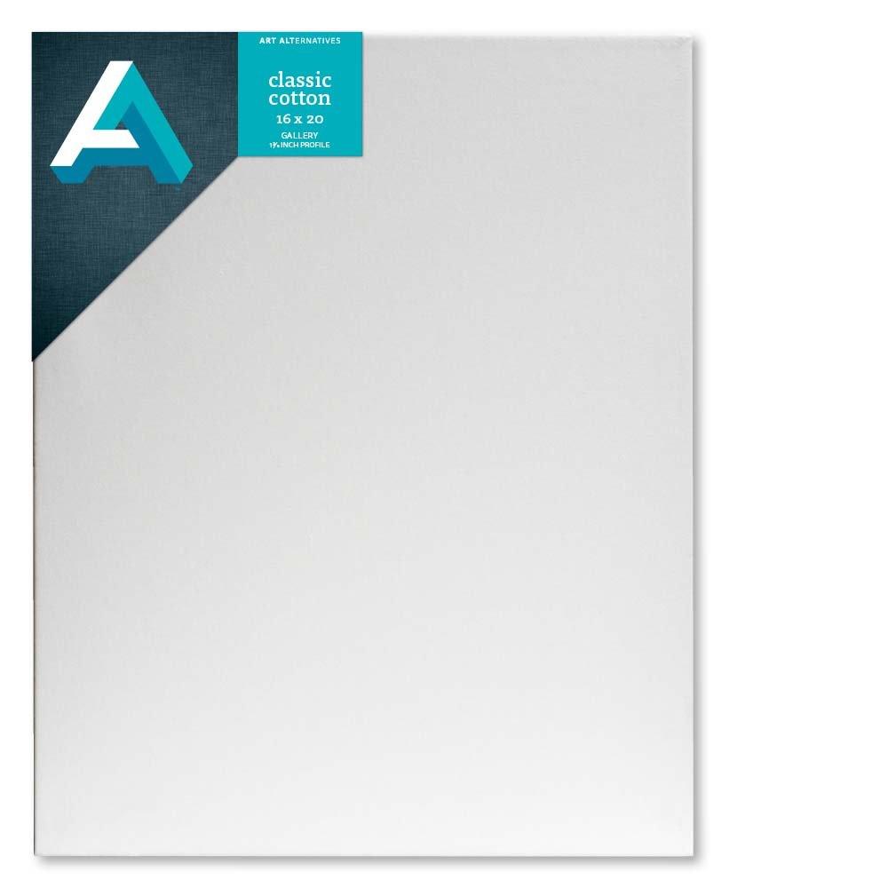 Amazon.com : 16x20 Gallery Canvas : Large Framed Blank Canvas ...