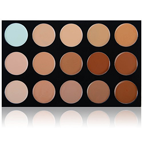 SHANY Masterpiece 15 Color Foundation, Concealer, Camouflage