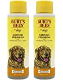 Burt's Bees for Dogs Oatmeal Dog Shampoo with Colloidal Oat Flour and Honey, 16 Ounces (Pack of 2)