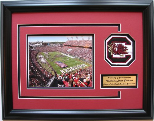 NCAA South Carolina Fighting Gamecocks Williams-Brice Stadium Framed Landscape Photo with Team Patch and Nameplate (Brice Stadium Williams)