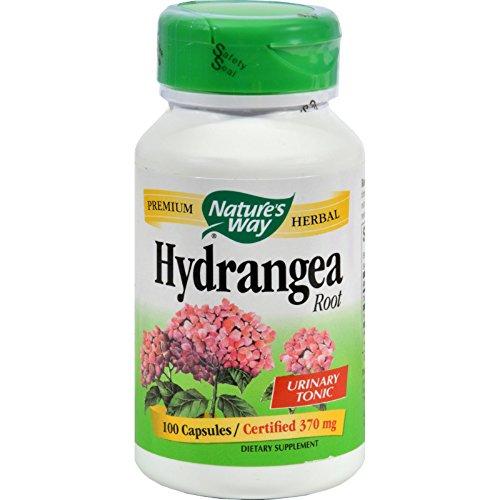 Natures Way Hydrangea Root Capsules