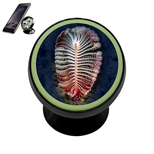 Universal Magnetic Phone Car Mount Holder Metal Luminous 360 Degree Rotation Car Dashboard, Car Phone Mount Luminous Magnetic Car Phone Holder Print Solitary Fossil Sea Feather