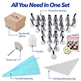 Cake Decorating Supplies Kit 56-in-1 Cake Supplies Nozzles Set with 33pcs Professional Stainless Steel Icing Tips, 1 Reusable Couplers, 1 Flower Nail, 20 Disposable Pastry Bag & 1 Reusable Pastry Bag.