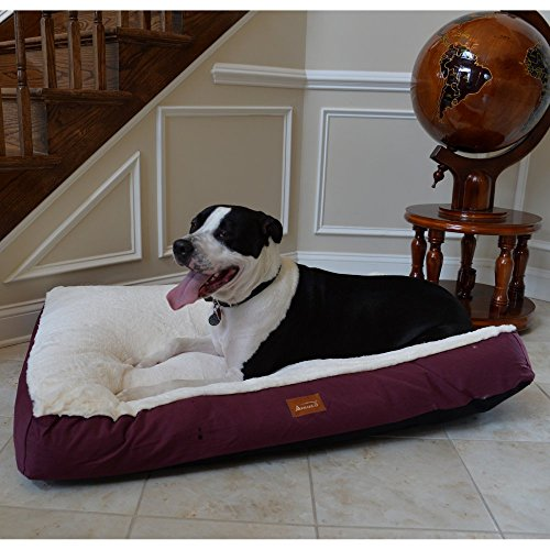 Armarkat-Pet-Bed-Mat-Ivory