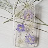 Sixspace Personalized Purple Larkspur and White Lavender Real Dried Pressed Flowers Case for iPhone 5 / 5s , iPhone6 4.7/iPhone6 Plus 5.5