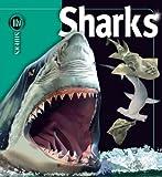 Sharks, Beverly McMillan and John A. Musick, 1416938672