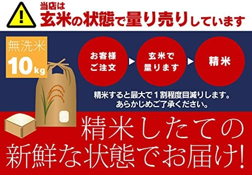 無洗米 令和年度産 北海道米 北海道から直送!北海道米 ゆめぴりか 無洗米 10kg ( 米 10kg /米/コメ)