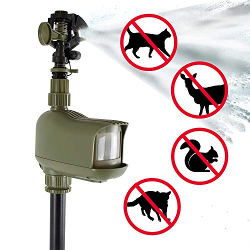Havahart 5277 Motion-Activated Animal Repellent & Sprinkler, 1 Pack, ()