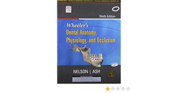 Wheeler\'s Dental Anatomy, Physiology and Occlusion 9th Ninth Edition ...