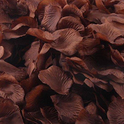 Sandistore 1000pcs Silk Rose Artificial Petals Wedding Party Flower Favors Decor (10000, brown)