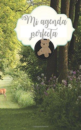 Mi agenda perfecta (Spanish Edition): Dreaming Graphics ...
