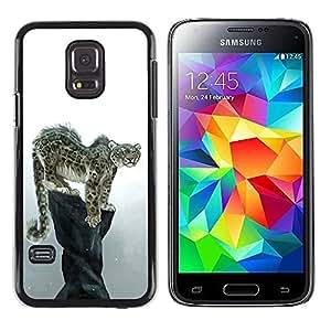 Paccase / SLIM PC / Aliminium Casa Carcasa Funda Case Cover para - Cool Snow Leopard - Samsung Galaxy S5 Mini, SM-G800, NOT S5 REGULAR!