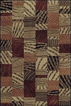 Shaw Living Accents 3-Foot 11-Inch by 5-Foot 3-Inch Rug in Lima Pattern, Multi