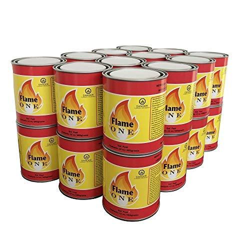 Flame One Indoor or Outdoor Premium Gel Fireplace Fuel in 13 Oz Cans (24 Pack) (Indoor Outdoor Gel)