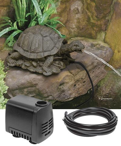 Beckett Turtle Pond Spitter Package by BestNest