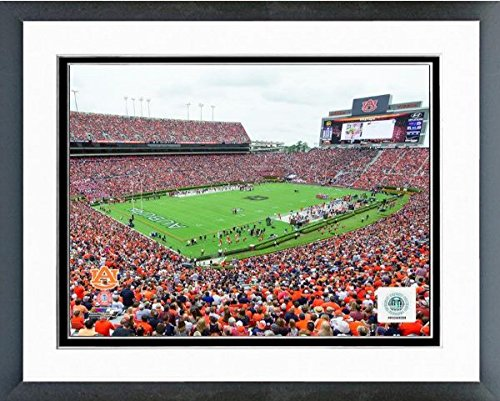 Auburn Tigers Jordan Hare Stadium Photo (Size: 12.5