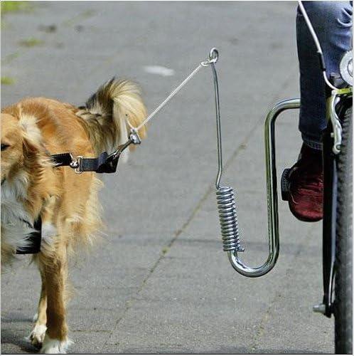 Muelle búfer – Perros bicicleta bicicleta distanciador bicicleta ...