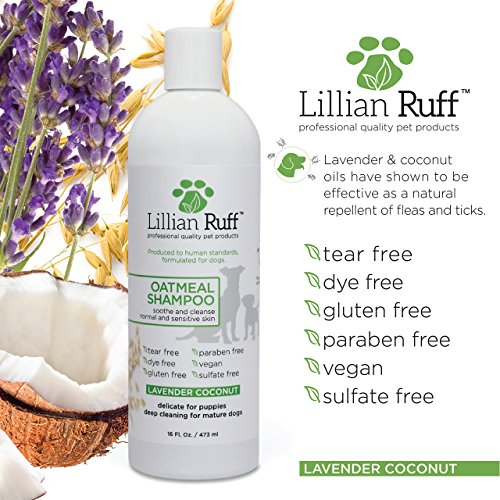 Dog-Oatmeal-Shampoo-and-Conditioner-Set-by-Lillian-Ruff-Lavender-Coconut-Scent-for-Itchy-Dry-Skin-with-Aloe-Deodorize-and-Soothe-Gentle-Cleanser-for-Normal-to-Sensitive-Skin-16oz