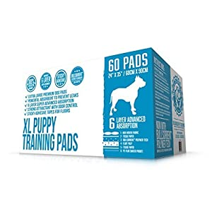 Bulldogology XL Puppy Pee Pads with Adhesive Sticky Tape – Extra Large Dog Training Wee Pads (24×35 X-Large, 60-Count)