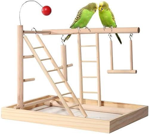 ZWW Parrot Playstand, Parque Infantil De Loro De Madera Patio De Recreo Perca con Escalera Y Columpios Y Juguetes para Ejercicios De Entrenamiento: Amazon.es: Hogar
