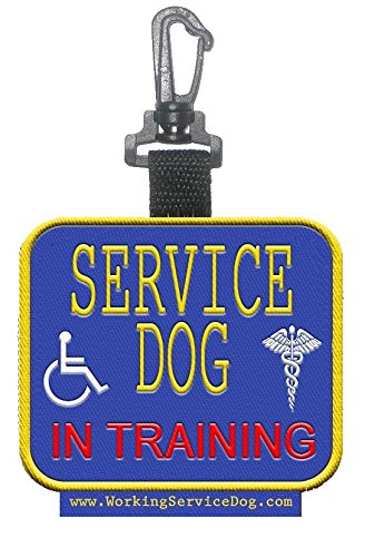 Sided Service Training Identification Patch