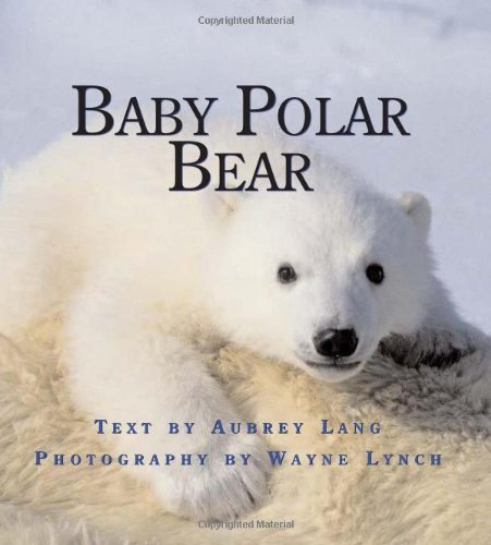 Baby Polar Bear (Nature Babies) ebook