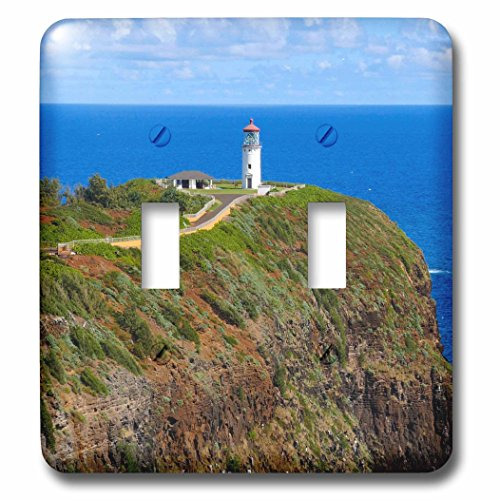 Point Kilauea - 3dRose (lsp_230644_2) Double Toggle Switch (2) Kilauea Point National Wildlife Refuge, Lighthouse, Kauai, Hawaii