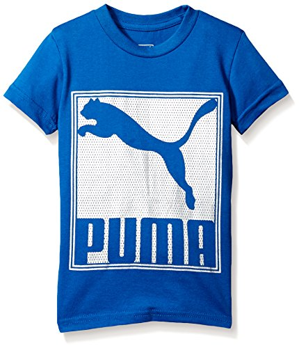 Blue Graphic Tee (PUMA Big Boys' Graphic Tee, True Blue Cat, Large (14/16))