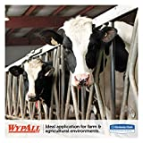 WypAll 01772 L10 SANI-PREP Dairy Towels,POP-UP Box, 1Ply, 10 1/2x10 1/4, 110 per Pack (Case of 18 Packs),White