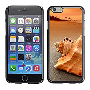 LECELL--Funda protectora / Cubierta / Piel For iPhone 6 -- Playa Mar Shell --