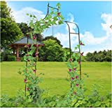 USA Premium Store 8'4 High x 4'7 Wide Steel Garden Arch Rose Arbor Climbing Plant Outdoor Garden