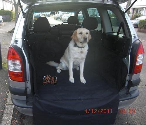 LANDROVER RANGE ROVER & SPORT 02 > - Heavy Duty Car Boot Protective Waterproof Liner/Cover- Great for Pets, Rubbish, Dogs bdp
