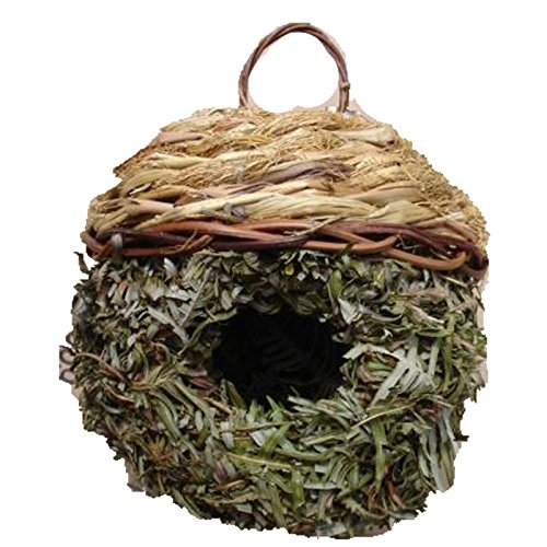 Roosting Nest - 7
