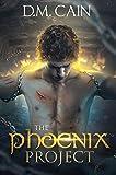 Bargain eBook - The Phoenix Project