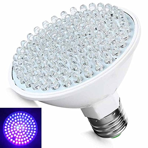 Purple Led Light Bulbs - 6