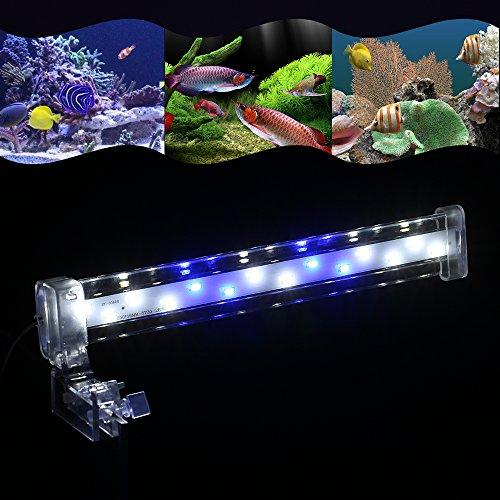Anself - Led Lámpara de Acuario con Clip, Luz Azul y Blanca para Estanque de Peces (8cm/12cm/18cm/28cm Opcional): Amazon.es: Hogar
