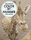 Relaxing Color By Number For Adults