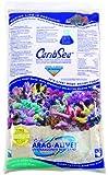 CaribSea Arag-Alive 20-Pound Special Grade Reef Sand, Bimini Pink