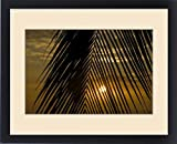 Framed Print of USA, Hawaii. Sunset over the Pacific Ocean seen through the leaves of a palm