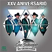 25 Aniversario Vol.2